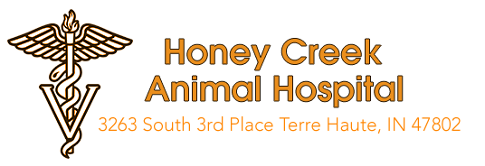 Honey Creek Animal Hospital